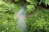 """Festival International des Jardins de Chaumont-sur-Loire (13ème) 2004 .<br /> Thème de l'année,""""Vive le chaos"""",ordre & désordre au jardin.<br /> Le vallon des brumes crée en 2000 par les jardiniers du conservatoire."""
