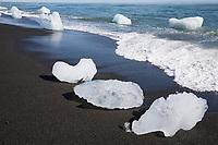 Eisbrocken im Meerwasser am Strand vor der Gletscherlagune Jökulsárlón, Jökulsarlon,  Jokulsarlon, Diamandstrand, Eislagune, Lagune mit Eis, Gletschereis, Eisschollen, Gletscher, Gletschersee, Gletscherflusslagune. Treibende Eisberge, die von der Gletscherzunge abgebrochen sind und in Richtung Meer treiben. Island. Teil des Vatnajökull-Nationalpark. glacial river lagoon, glacial lake, glacier lake, iceberg lagoon, glacier calving into the lagoon, Diamond Beach, Vatnajökull National Park, Iceland