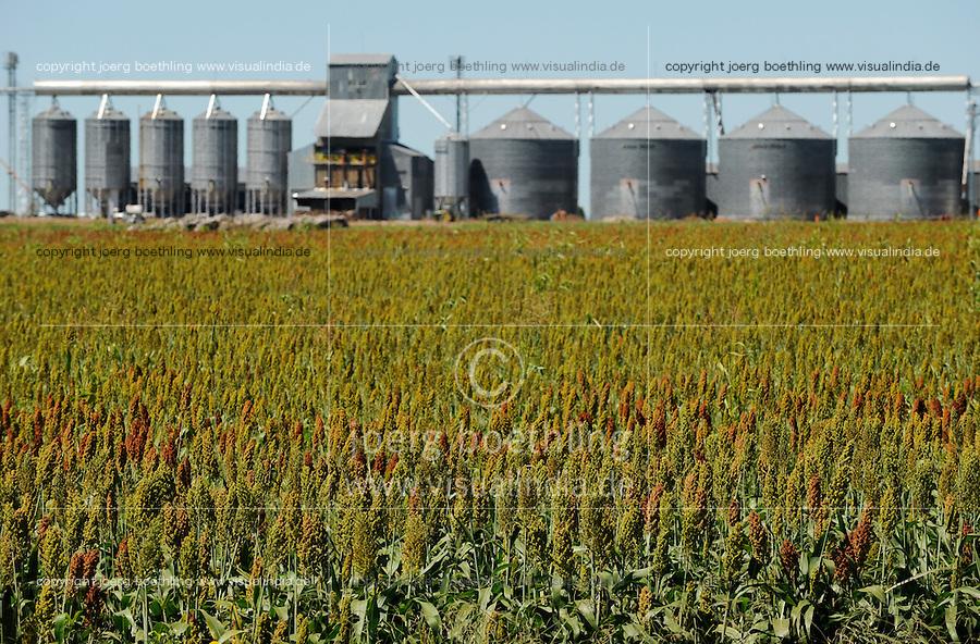 URUGUAY Estancia La Magdalena near Salto, crop store and field with sweet sorghum / Getreidesilo und Feld mit Zuckerhirse