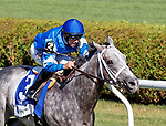 Zennor (no. 3), ridden by Joe Bravo and trained by Kiaran McLaughlin, wins the 4th running of the Lure Stakes for four year olds and upward on August 5, 2017 at Saratoga Race Course in Saratoga Springs, New York.   (Bruce Dudek/Eclipse Sportswire)