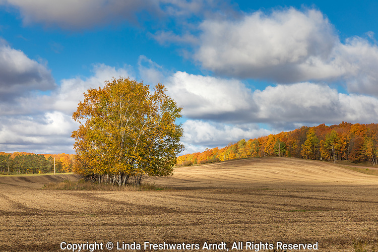 The rolling hills of a farmer's field in northern Wisconsin.