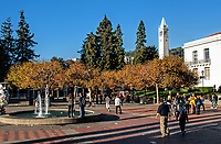 A clear day in the fall at the University of California campus in Berkeley, California. A casual Saturday afternoon view across Sproul Plaza and Ludwig's Fountain.