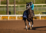 OCT 29: Breeders' Cup Dirt Mile entrant Coal Front, trained by Todd A. Pletcher, gallops at Santa Anita Park in Arcadia, California on Oct 29, 2019. Evers/Eclipse Sportswire/Breeders' Cup