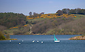 05/05/16 <br /> <br /> A sailing dingy tacks across Carsington Water near Ashbourne, in the Derbyshire Peak District<br /> <br /> All Rights Reserved: F Stop Press Ltd. +44(0)1335 418365   +44 (0)7765 242650 www.fstoppress.com