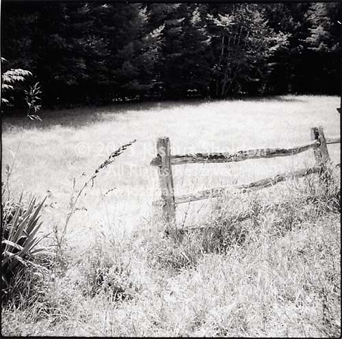 Wooden fence and field<br />
