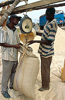 Kenya. Rift Valley Province. Matisi. Two men are weighing bags of maize to be sold in the market. Maize seeds are laid on the ground.  © 2004 Didier Ruef