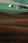 Wheat farm, the Palouse, Columbia Basin, Eastern, Washington State, Pacific Northwest, .