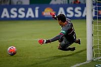 SÃO PAULO, SP 23.01.2019: PALMEIRAS-BOTAFOGO - Rodrigo defende o penalti. Palmeiras e Botafogo, pela segunda rodada do campeonato Paulista 2019, no Allianz Parque, zona oeste da capital. (Foto: Ale Frata/Codigo19)