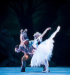 Birmingham Royal Ballet The Dream