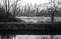Il naviglio di Paderno d'Adda e il fiume Adda --- The naviglio canal of Paderno d'Adda alongside the river Adda