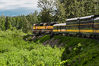 Alaska railroad scenic excursion train, Alaska, USA