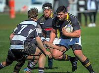 150912 Under-19 Representative Rugby - Wellington v Hawke's Bay