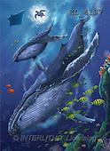 Interlitho, Lorenzo, FANTASY, paintings, whales, tortoise, KL, KL4197,#fantasy# illustrations, pinturas