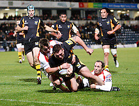 Photo: Richard Lane/Richard Lane Photography. London Wasps v Newport Gwent Dragons. Amlin Challenge Cup. 13/10/2012. Wasps' Fabio Staibano  crashes over for a try.