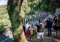 Stage 19 from Bourg-en-Bresse to Champagnole (167km)<br /> <br /> 107th Tour de France 2020 (2.UWT)<br /> (the 'postponed edition' held in september)<br /> <br /> ©kramon