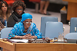 Security Council meeting Maintenance of international peace and security