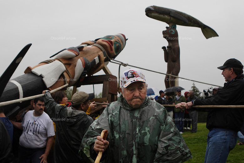 Totem raising ceremony in heavy rain storms in Klawock where seven poles are added to the Tlinget park.  People carried one pole through town where it was carved and all helped pull on ropes to raise it into place. Tlingit, Haida and Shimshane people came together for the historic event,
