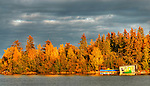spectacular fall colours behind houseboat on Yellowknife Bay