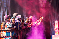 Colorful group of Indian women celebrating Holi with pink powder cloud in Sri Radha Vallabh Lal temple in Vrindavan, near Mathura Uttar Pradesh, India