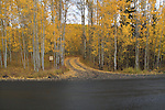 Dirt road leading from a paved road in the San Juan Mountains, autumn, Colorado.