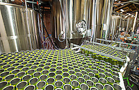 NoDa  Community - NoDa Brewing Company located on Davidson Street in the Charlotte's NoDa Community. Visitors to the brewery can sip on a cold brew while getting an insiders view of the stainless steel brew kettles and fermenters onsite.<br /> <br /> - Billy Howle, an employee at NoDa Brewing Company keeps the filling station running on  a batch of Hop, Drop 'N Roll IPA (India Pale Ale) at the NoDa company.<br /> <br /> <br /> Charlotte Photographer - PatrickSchneiderPhoto.com