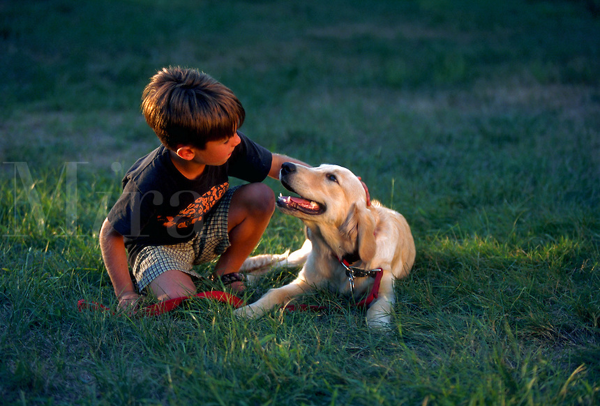 A young boy pets a Golden Retriever puppy.