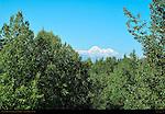 Mount McKinley from Denali Star Train, Alaska Range, Alaska Railroad, Alaska