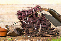 Domaine Borie la Vitarèle Causses et Veyran St Chinian. Languedoc. Bunches of vine twigs branches used inside a fermentation tank as a crude filter when emptying the tank. France. Europe.