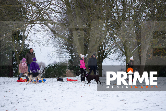 Families enjoying the park following Heavy Snowfall at Sidcup, Kent, England on the 8 February 2021. Photo by Alan Stanford.