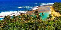 Kee Beach palm trees overlooking the beach, the turquoise coral reef and the Pacific Ocean, from Kalalau Trail, Na Pali coast of Kauai Island, Hawaii