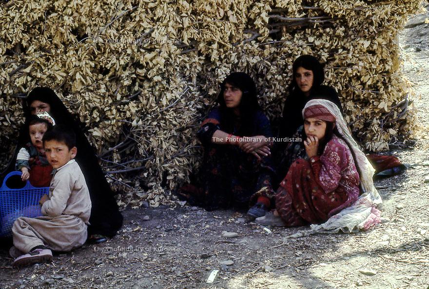 Iraq 1968 <br /> Women and children in a village  <br /> Irak 1968 <br /> Femmes et enfants dans un village