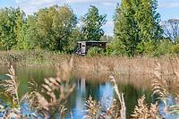 Turm zur Vogelbeobachtung im Linumer Teichland, Linum, Fehrbellin, Ostprignitz-Ruppin, Brandenburg, Deutschland