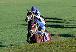 LEXINGTON, KY - OCTOBER 08: #10 Photo Call (IRE) and jockey Kent Desormeaux win the 19th running of The First Lady (Grade 1) $400,000 for owner Teresa Viola Racing Stables and trainer Todd Pletcher at Keeneland Race Course in Lexington, KY.  October 8, 2016, Lexington, Kentucky. (Photo by Candice Chavez/Eclipse Sportswire/Getty Images)
