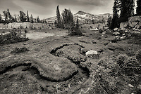 Small stream and meadow with Eagle Cap Mountain. Eagle Cap Wilderness, Oregon