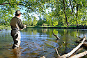 00416-028.16 Fishing:  Angler wearing waders is fishing river near overhaning trees.  Bass, smallmouth, trout.