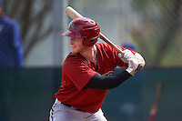 Arizona Diamondbacks Zach Borenstein (36) during an instructional league game against the Texas Rangers on October 10, 2015 at the Salt River Fields at Talking Stick in Scottsdale, Arizona.  (Mike Janes/Four Seam Images)