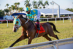 January 23, 2021:  #7 Tide of the Sea, with jockey Tyler Gaffalicone on board, wins the W. L. McKnight G3 Stakes,   at Gulfstream Park in Hallandale Beach, Florida.  Liz Lamont/Eclipse Sportswire/CSM