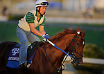 4 November 2010:  Haynesfield, trained by Steven M. Asmussen and to be ridden by jockey Ramon Dominguez, during work outs for the 2010 Breeders Cup at Churchill Downs in Louisville, Kentucky.(Scott Serio/Eclipse Sportswire)