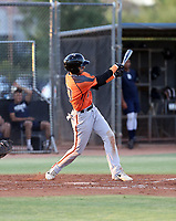 Victor Bericoto - 2019 AZL Giants (Bill Mitchell)
