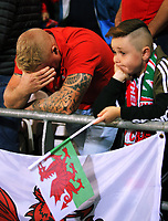 Wales supporters watch the game in disappointment after conceding a goal during the FIFA World Cup Qualifier Group D match between Wales and Republic of Ireland at The Cardiff City Stadium, Wales, UK. Monday 09 October 2017