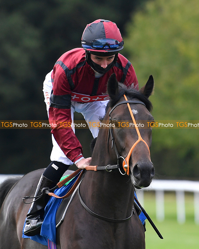 Mickydee ridden by Rossa Ryan goes down to the start of The Radcliffe & Co Novice Median Auction Stakes (Div 1) during Horse Racing at Salisbury Racecourse on 11th September 2020