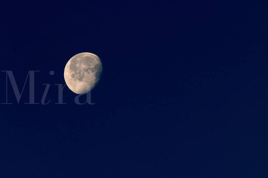 Nearly full moon in dark blue sky, Zion National Park, Washington County, U