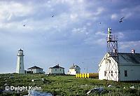 MC05-002b  Machias Seal Island - Bay of Fundy, island, lighthouse and buildings