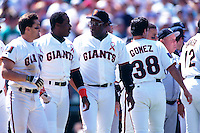 SAN FRANCISCO, CA - Barry Bonds of the San Francisco Giants is led off the field by his father, Giants batting coach Bobby Bonds during a fight during a game against the Colorado Rockies at Candlestick Park in San Francisco, California in 1994. Photo by Brad Mangin