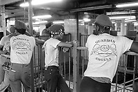 - New York, members of the Guardian Angels group patrol a ferry landing for State Island<br /> <br /> - New York, componenti del gruppo Guardian Angels sorvegliano un approdo del traghetto per State Island
