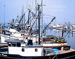 Foggy Harbor, Crescent City, Del Norte County, California