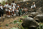 School chidren visitDarwin research center on Isabela island and are looking at the giant turtle, the mythic symbol of this archipelago appeared in the Pacific only five millions years ago<br /> Les enfants des ecoles viennent voir les tortues geantes des Galapagos (Geochelone elephantophus) au  Darwin research center sur Isla Isabela