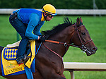 Liaison , trained by Bob Baffert and to be ridden by Martin Garcia, works out in preparation for the 138th Kentucky Derby at Churchill Downs in Louisville, Kentucky on May 3, 2012