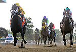 September 26, 2015 : Rock Fall (left), ridden by Javier Castellano, wins the Vosburgh Stakes on on Turf Classic Day at Belmont Park in Elmont, NY. Scott Serio/ESW/CSM