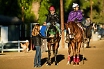 ARCADIA, CA - OCTOBER 22: Bolt d'Oro gets a pet from Shelby Ruis before he heads to the track to workout with regular jockey Corey Nakatani at Santa Anita Park on October 22, 2017 in Arcadia, California. (Photo by Alex Evers/Eclipse Sportswire/Getty Images)